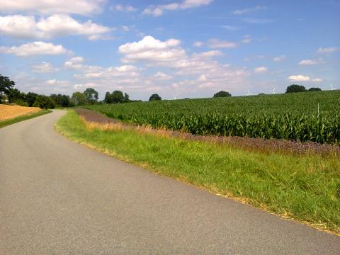 A Country Road in Germany