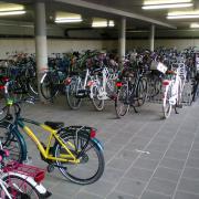 School cycle parking