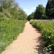 Bournbrook Walkway