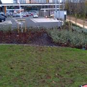 Desire lines at the new Sainsbury's in Selly Oak have already appeared