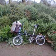 treecycling on a Brompton