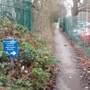 Disabled path at the QE