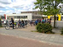 Dutch field trip